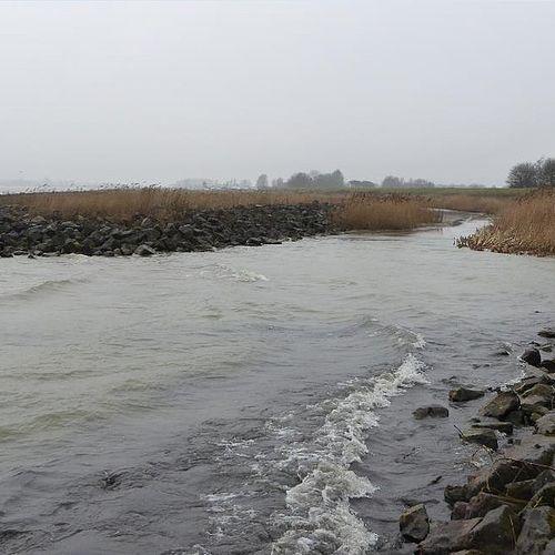 Afbeelding van Omstreden zandwinning in het IJsselmeer