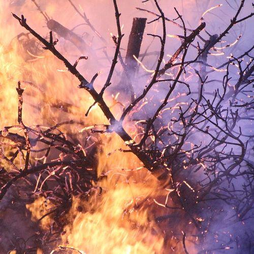 Afbeelding van Risico op natuurbrand door droogte en wind